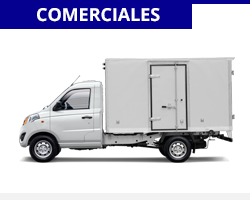 comerciales-foton-grass-categoria-1